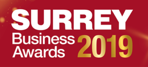 Surrey Business Awards Logo 4
